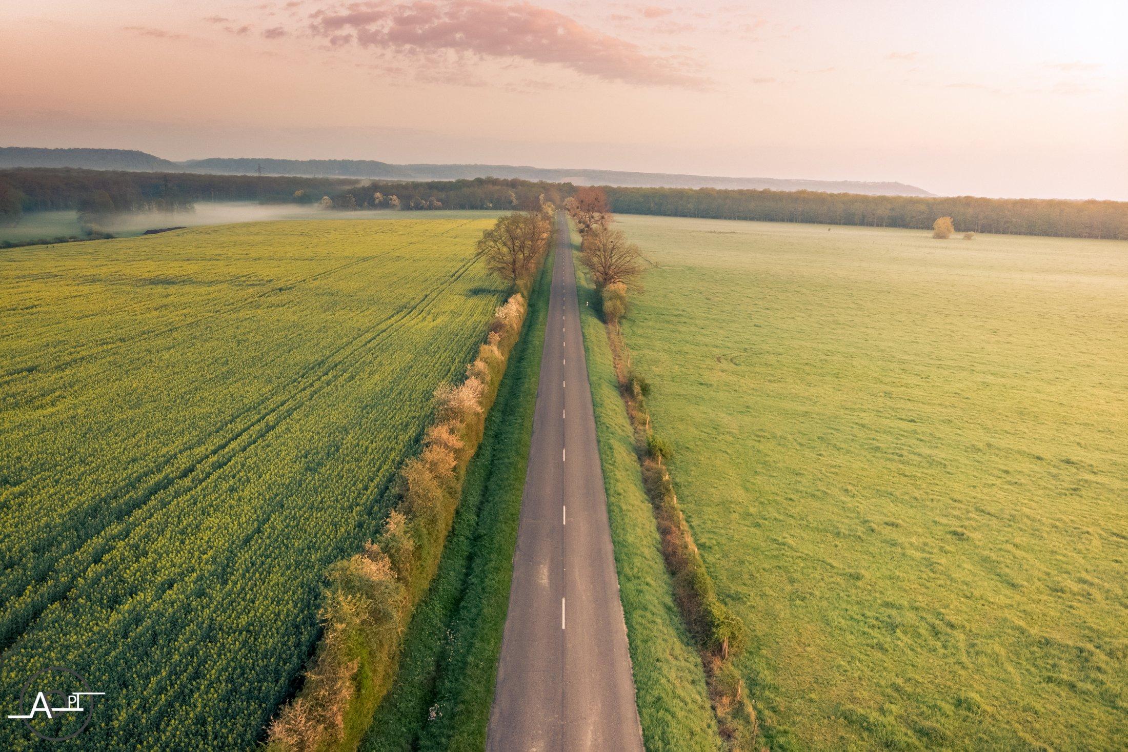 Route Jaune